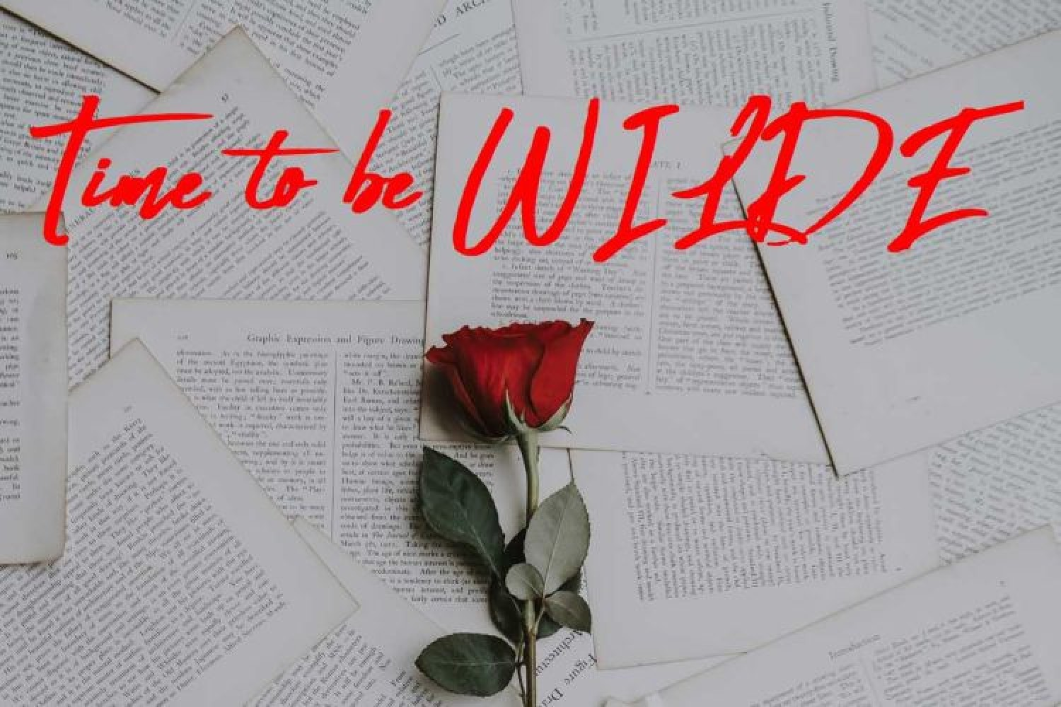Time to be WILDE: a Milano laboratorio teatrale monografico