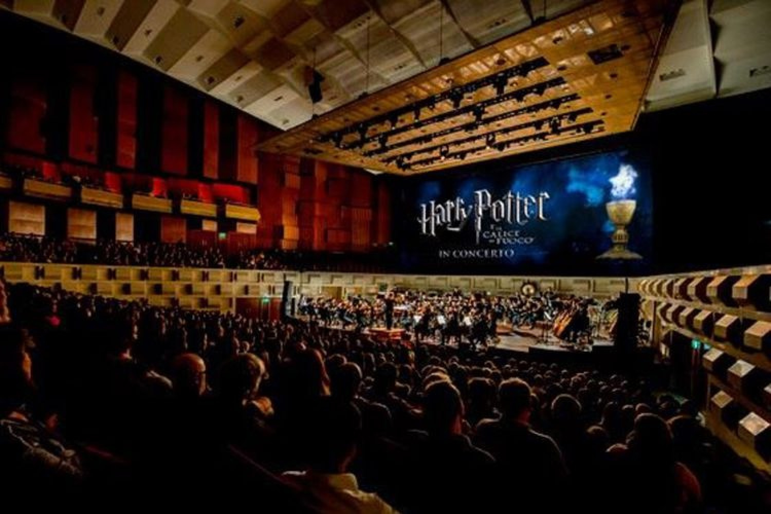 Harry Potter, la saga cinematografica in concerto a Milano e Roma