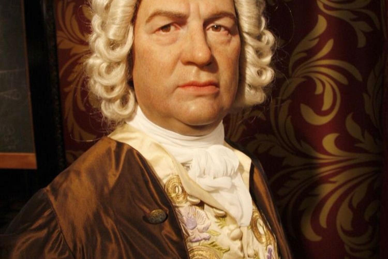 Solo e fuori dai soliti schemi: l'originale Bach del libro di Alvise Filippo Stefani