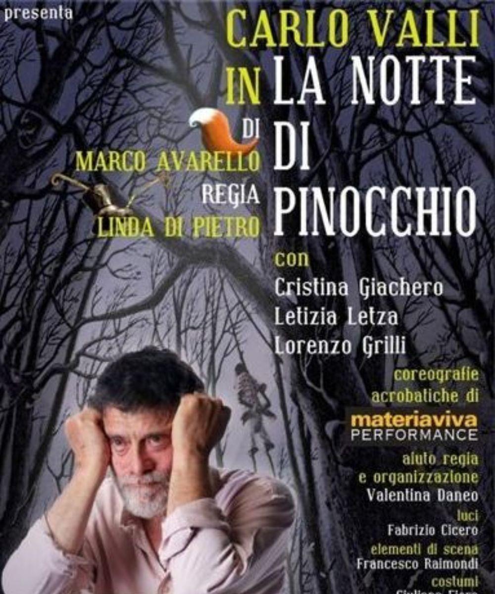 La notte di Pinocchio