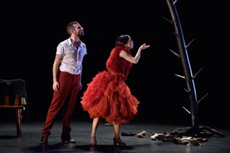 10 Años de Cultura y Pasión: il travolgente flamenco