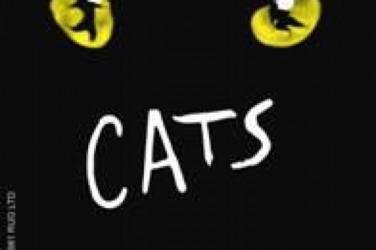 Cats torna al Sistina il 14 Aprile