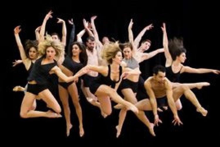 la Parsons Dance fa tappa aTeatro Comunale di Vicenza