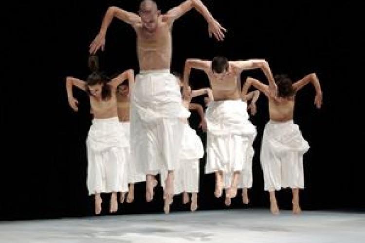 Il Lago dei Cigni dell'Opus Ballet ad Ancona