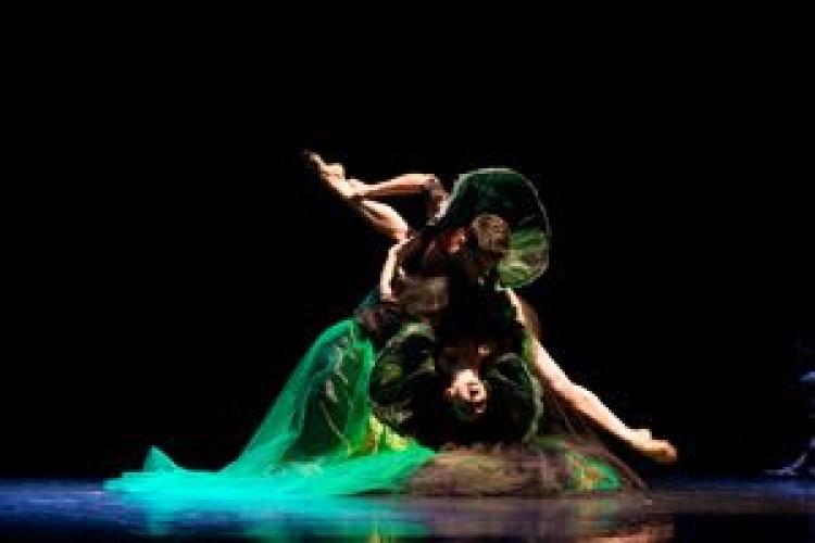 The Quartet, al debutto l'omaggio a Verdi del Balletto di Roma