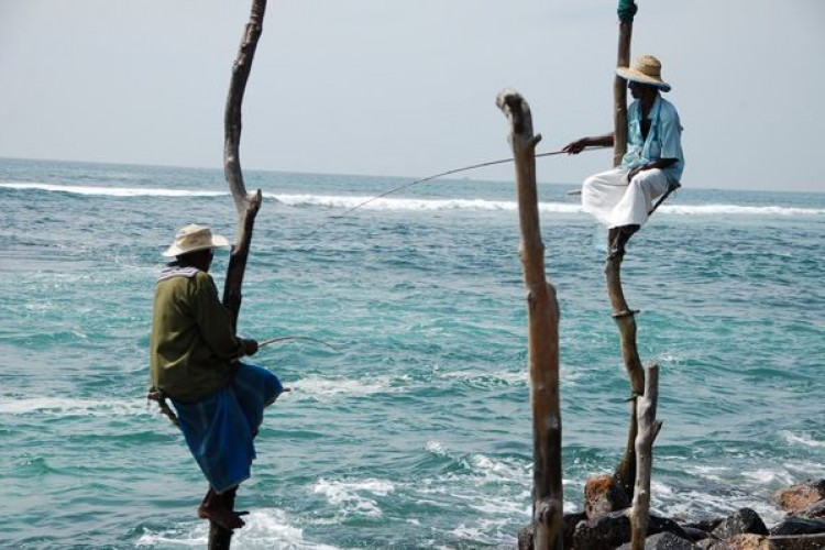 Sri Lanka: il nuovo capitolo del diario del viaggiatore
