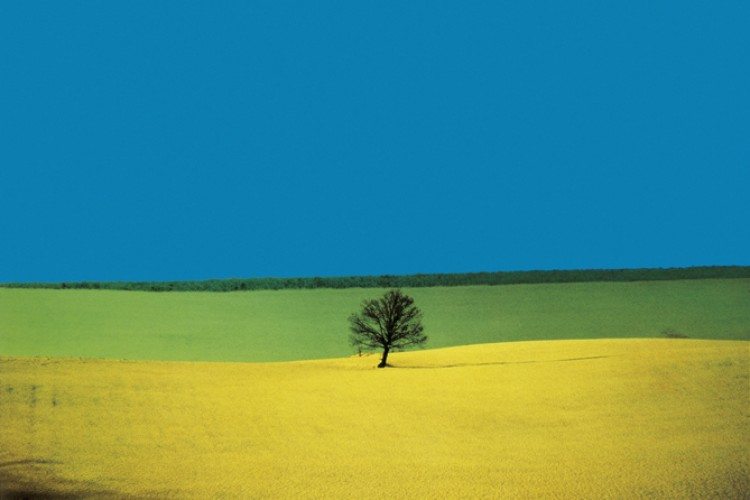 Franco Fontana  'Full Color'