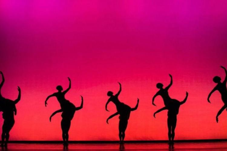 Opus Cactus: le recensioni di Onda Critica - Teatro visto dagli Studenti