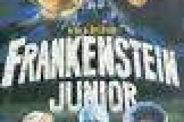 """Il musical """"Frankenstein Junior"""" a Broadway in autunno"""